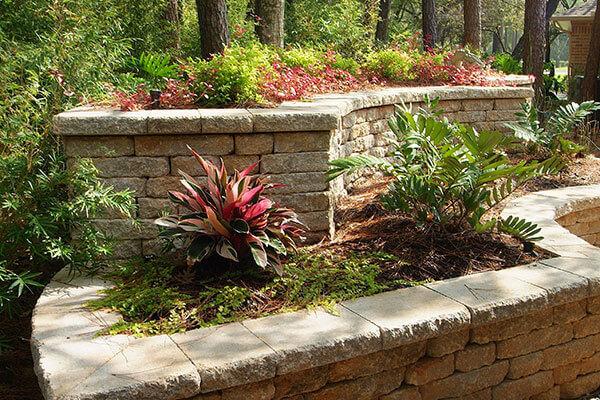 landscape plants and flowers